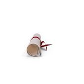 Diploma Scroll.H01.2k